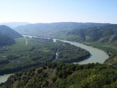 Donauschleife Rossatzer Au