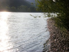 Licht auf Donau